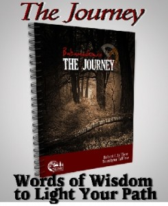 The Journey (Babamadizwin)